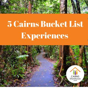 5 Cairns Bucket List