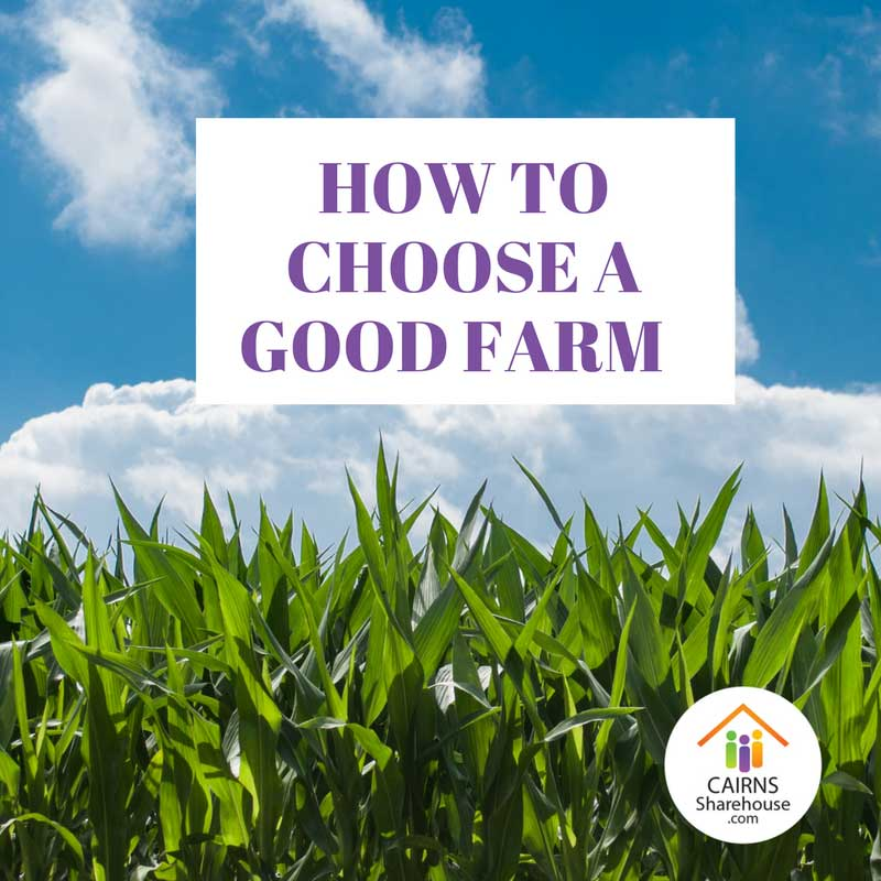Find a Good Farm Job in Cairns