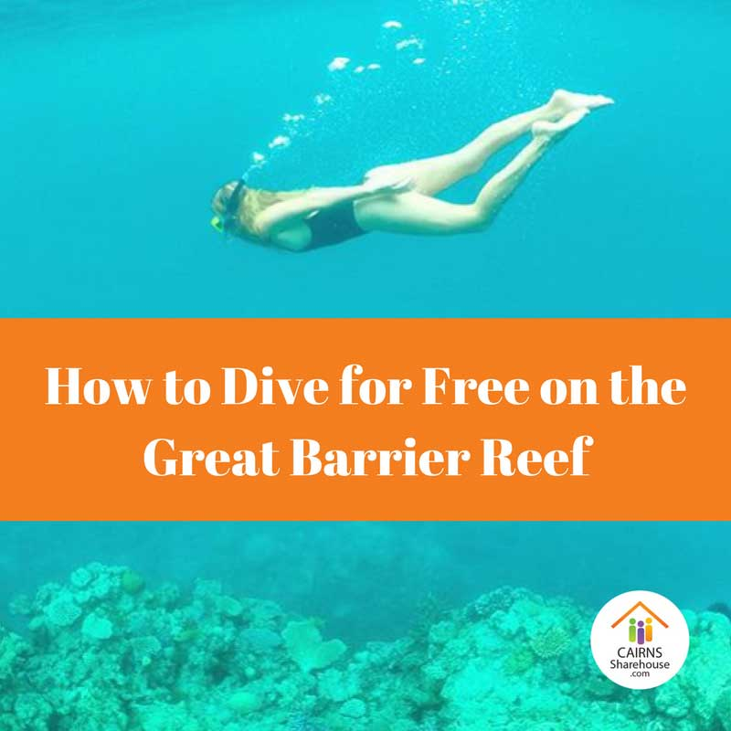 How to Dive for Free on the Great Barrier Reef