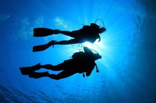 Dive Master Internship Australia